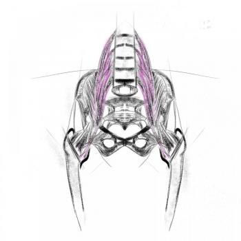 Bozzetto Anatomico Psoas